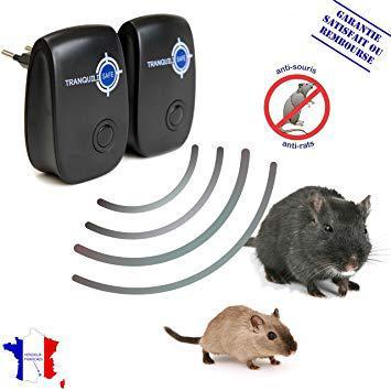appareil ultrason pour souris