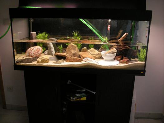 aquarium neuf