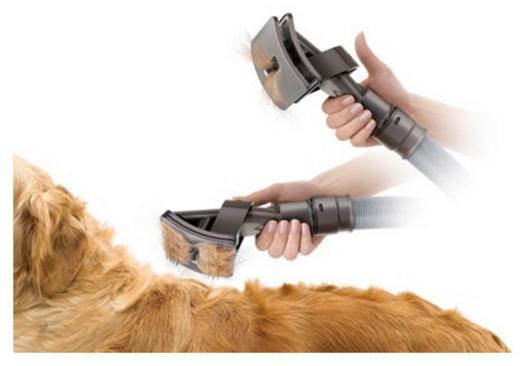 aspirateur poils de chien dyson