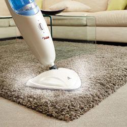 aspirateur vapeur pour tapis