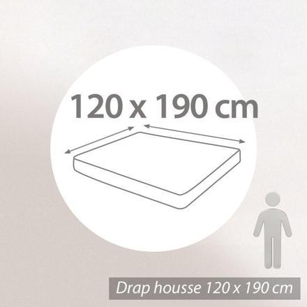 draps housses 120x190