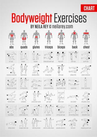 exercice musculation maison sans materiel