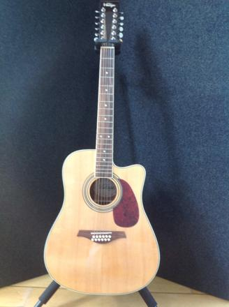 guitare electro acoustique 12 cordes