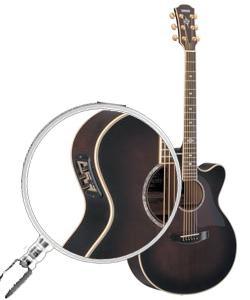 guitare electro acoustique marque