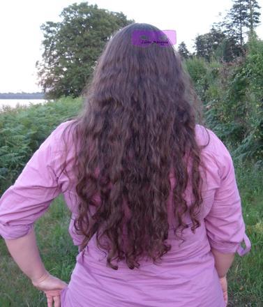 hibiscus cheveux