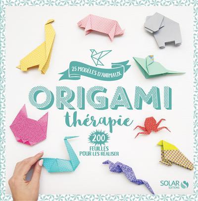 kit origami adulte
