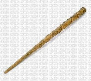la baguette d hermione