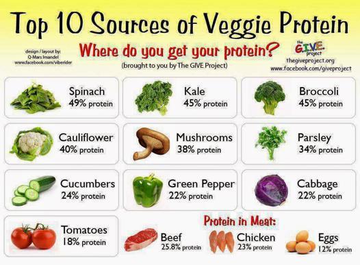 liste des proteines vegetales