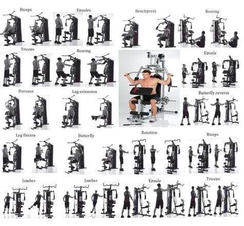 machine musculation exercice