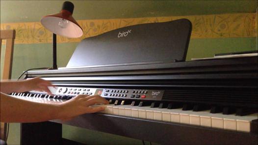 piano bird dp1