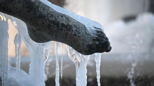 pied glacé