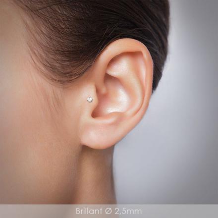 piercing oreille tragus